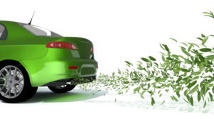 Как правильно вписать экологический класс автомобиля в ПТС