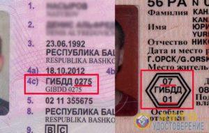 Что нужно писать в Госуслугах в данных водительского удостоверения в графе «Кем выдано»